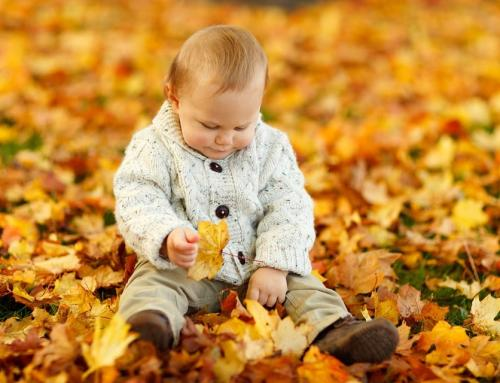Autumn Sensory Activities For Everyone