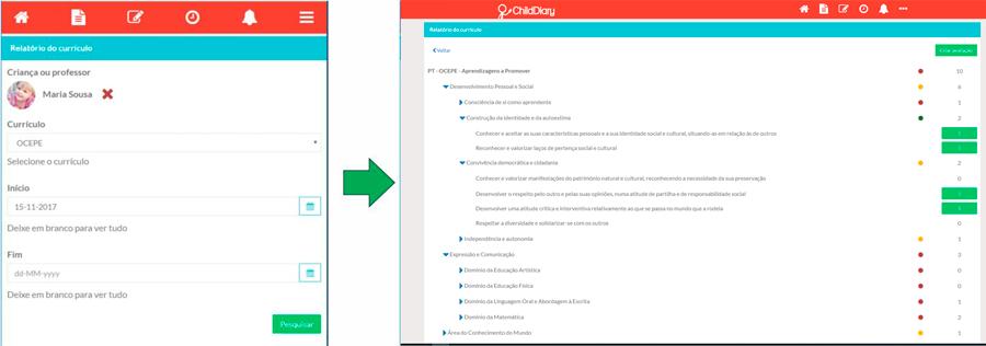 Relatório do currículo - observar, refletir, planear e avaliar